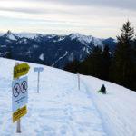 Trineo en Wallberg, trineo múnich, rodelbahn múnich, qué hacer en invierno en múnich, nieve múnich